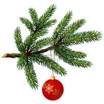 11465404-albero-ramo-di-pino-con-la-palla-di-natale-su-sfondo-bianco-illustrazione-vettoriale