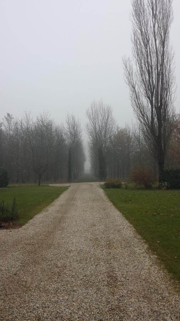 Campagna di Medole- Verona