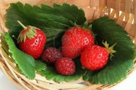 fresche fragole e lamponi