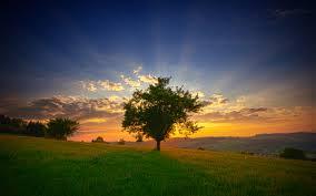 il sole all'alba