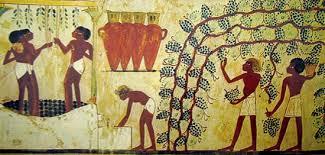 vino egiziano