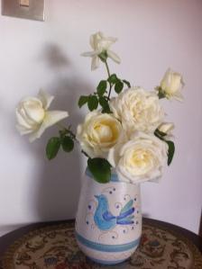 Rose bianche per Evelina
